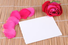 Rose and a blank card Stock Photography