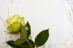 Rose on a blank leaf paper Stock Photos