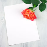 Rose and blank sheet Stock Photo