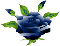 Rose bleue illustration stock