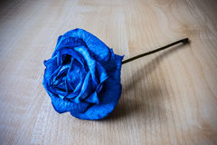 Rose bleue photos libres de droits