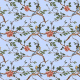 Rose blossom branches with bird seamless pattern Royalty Free Stock Photos