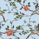 Rose blossom branches with bird seamless pattern Stock Photography