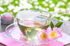 Rose blossom tea, wild roses Stock Image