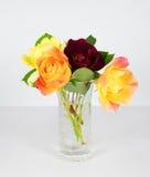 Rose Blossoms miniatura Fotografía de archivo libre de regalías