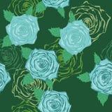 Rose blu Fotografia Stock