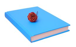 Rose on blue book Royalty Free Stock Images