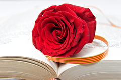 Rose and Book Stock Photos