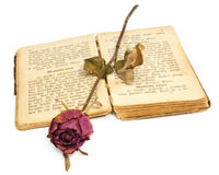 Rose and book. Dried rose on an old book Royalty Free Stock Photos