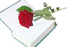 Rose with a book Royalty Free Stock Image