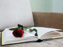 Rose and Book. An open book and a rose on a brown sofa couch royalty free stock photography