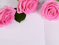 The rose on the book Royalty Free Stock Photos