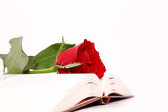 Rose & Book Stock Images