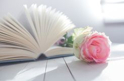 Rose and Book romance love Royalty Free Stock Photo