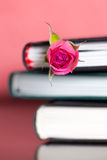 Rose&Books Lizenzfreie Stockfotografie