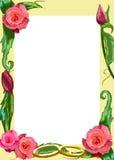 Rose border Stock Photos