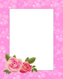 Rose border Royalty Free Stock Image