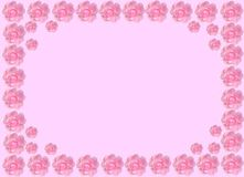 Rose border pink Stock Photos
