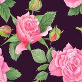 Rose Botanical Watercolor Pattern illustrazione di stock