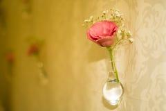 Rose in a Bottle. Delicate flower in a bottle Royalty Free Stock Image