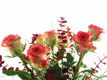 Rose bouquet. Isolated on a white background royalty free stock photo