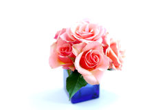 Rose bouquet Royalty Free Stock Photography