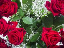 Rose bouquet from above wide royalty free stock photo