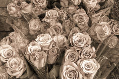 Rose bouquets for sale in sepia Stock Images
