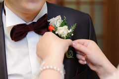 Rose Boutonniere Stock Photography