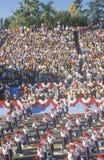 Rose Bowl Parade, Pasadena, Califórnia Fotografia de Stock