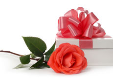 Rose and box Stock Photography