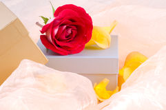 Rose and boxes Stock Images