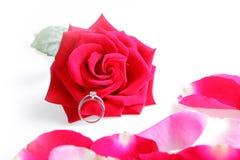 rose bröllop för cirkel Arkivfoto