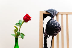 Rose and bra Royalty Free Stock Photography