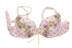 Rose bra with green embroidery Stock Photos
