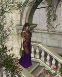 rose briar Zdjęcie Royalty Free