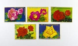Rose-Briefmarken Lizenzfreie Stockfotos