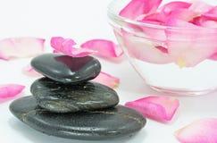 rose brunnsort för petal Arkivfoton