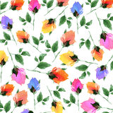 Watercolor Rose Bud Background. Handpainted watercolor rosebuds in a fun tossed pattern Stock Photos