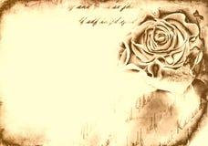 Rose bud on grunge background Stock Photography