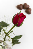 Rose Bud and Heart Chocolates Stock Image