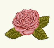 Rose bud with leaves painted in watercolor style Royalty Free Stock Image