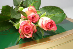 Rose-buds and chocolates. Rose-buds on a tin of chocolates over a grey background Stock Images