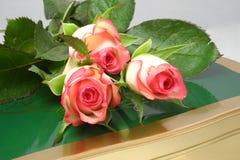 Rose-buds en chocolade stock afbeeldingen