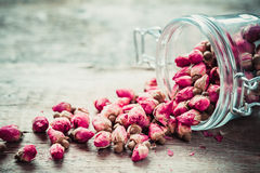 Rose buds in glass jar. Royalty Free Stock Photography