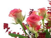 rose bukiet. Fotografia Stock