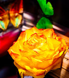 Rose And Butterfly over Royalty Free Stock Photos