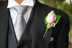 Rose button holes. Wedding suit with tie and rose buttonhole Stock Photos