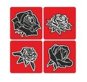 Rose15c Stock Photos