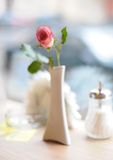 Rose in Cafe Royalty Free Stock Photo